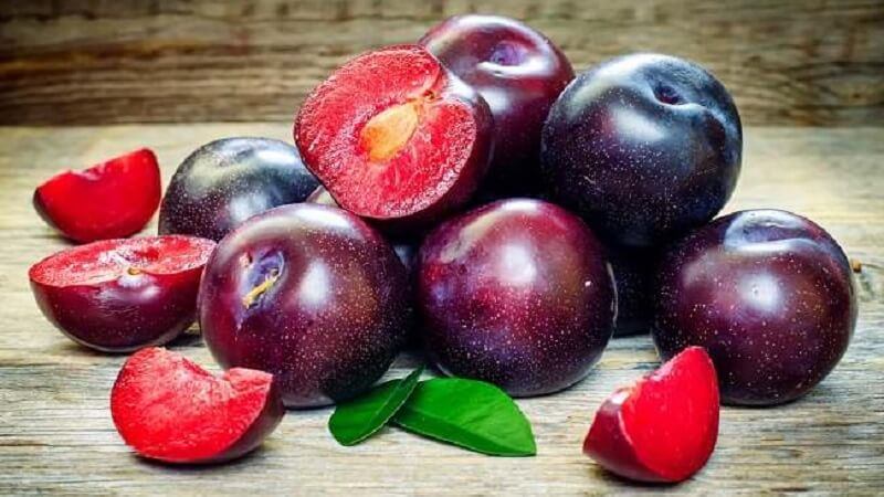 Apakah kamu sudah pernah mencoba buah plum 11 Manfaat Buah Plum Bagi Kesehatan Tubuh