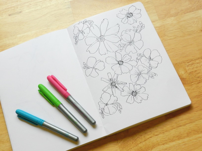 Ink Sketches of Geraniums and Cosmos Flowers: Grow Creative
