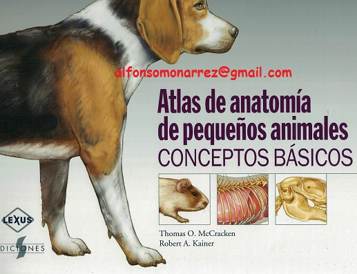 LIBROS MEDICINA: ATLAS DE ANATOMÍA DE PEQUEÑOS ANIMALES perros ratas ...