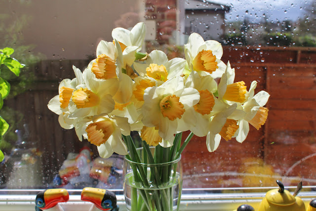 The Butterfly Balcony: Wendy's Week Airfix & Allotmenteering - Daffodils