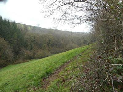 Mid-Devon, January