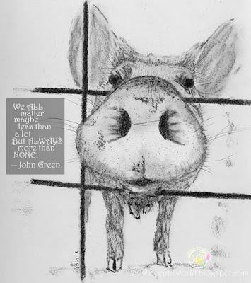 Pig-Fonda'sAnimalPhotoChallenge-HuesnShades