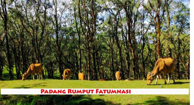 Wisata alam Fatumnasi TTS