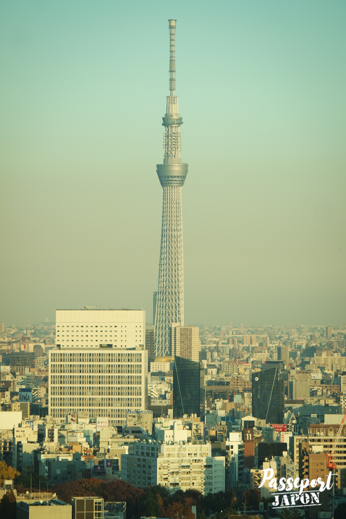 Vue sur la Tokyo Skytree depuis Bunkyô Civic Center