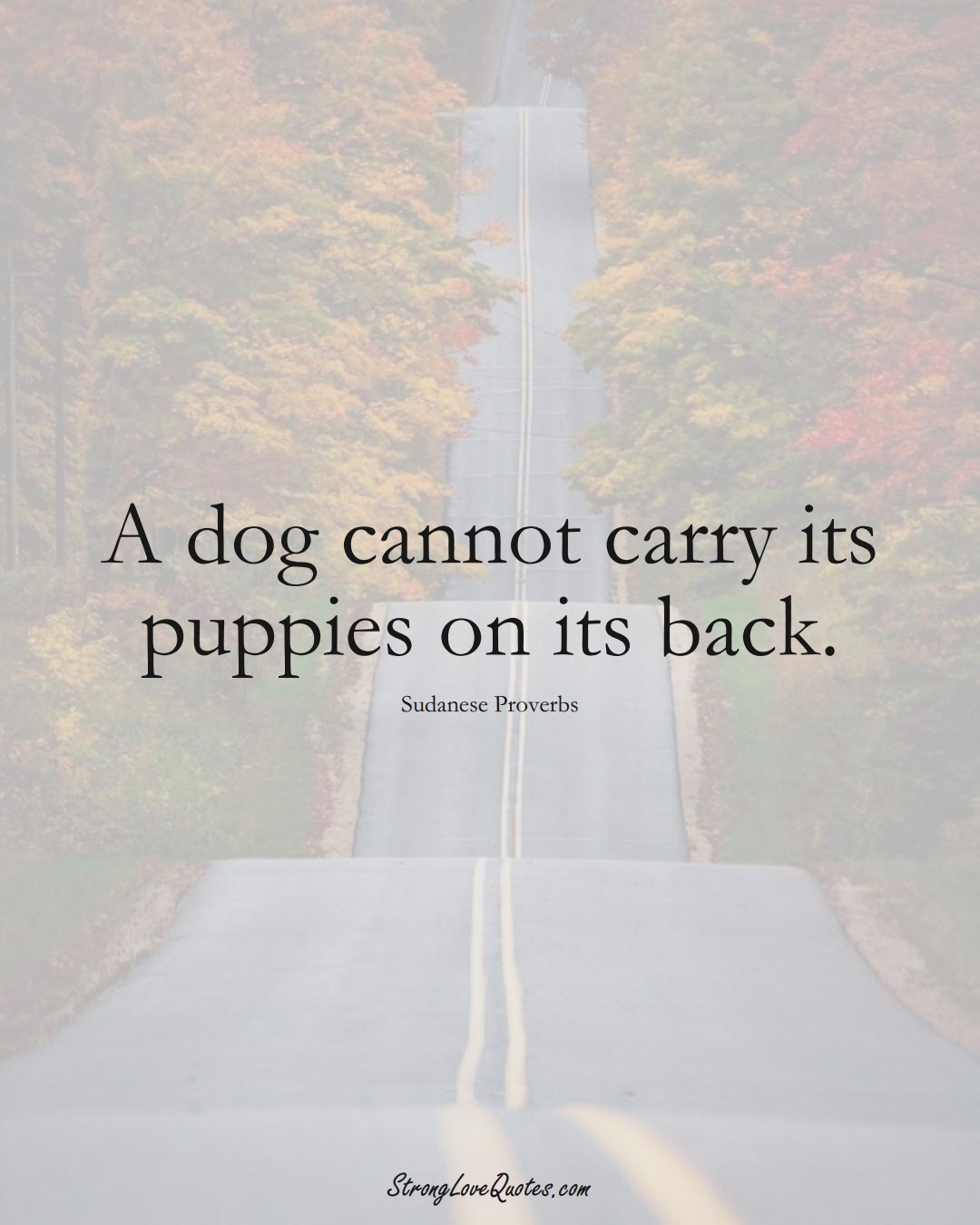A dog cannot carry its puppies on its back. (Sudanese Sayings);  #AfricanSayings