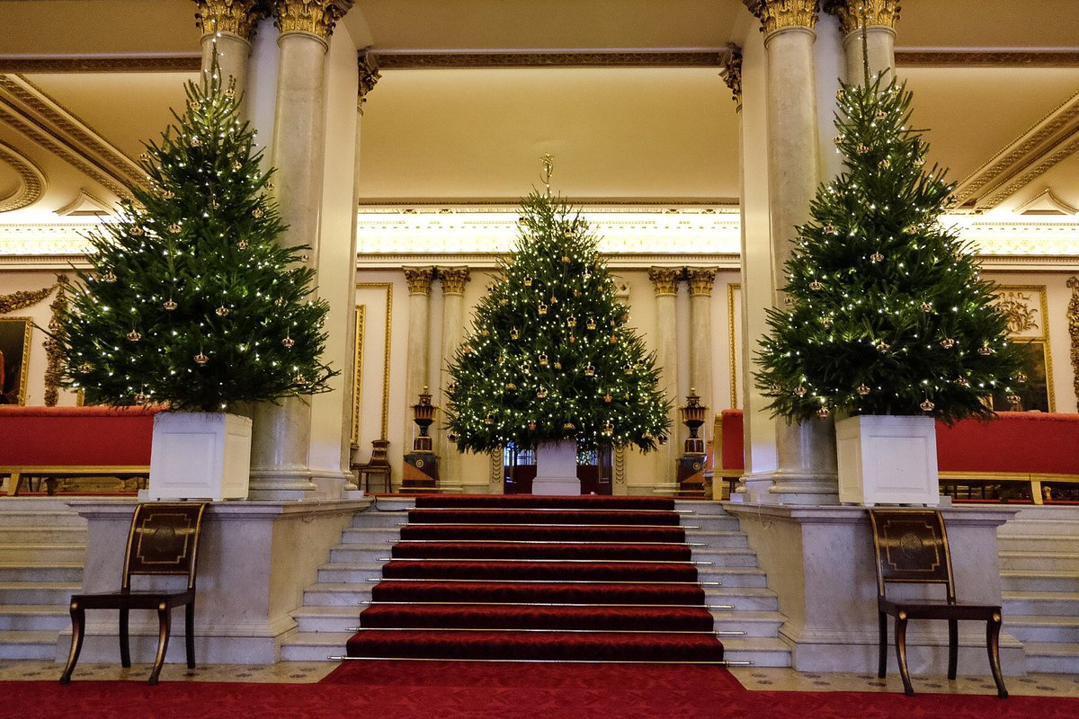 Forum on this topic: Heres How Buckingham Palace Does Christmas Decorations, heres-how-buckingham-palace-does-christmas-decorations/