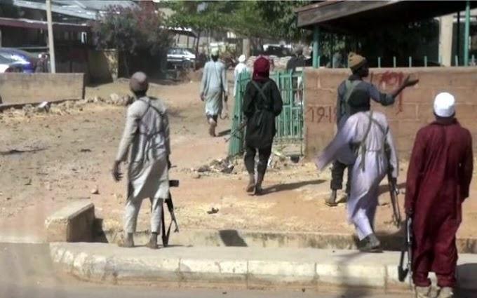 Boko Haram reportedly captures Borno town