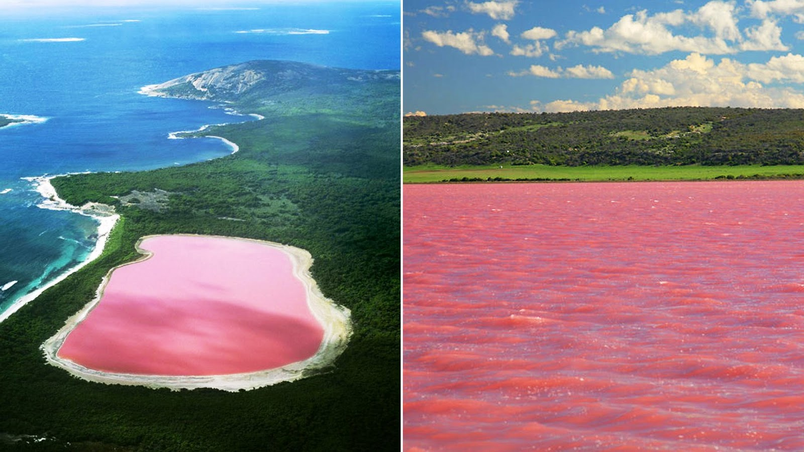 pink lake esperance