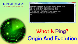 What Is Ping? Origin And Evolution