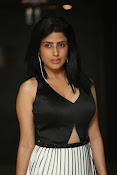 pragya latest sizzling photos-thumbnail-2