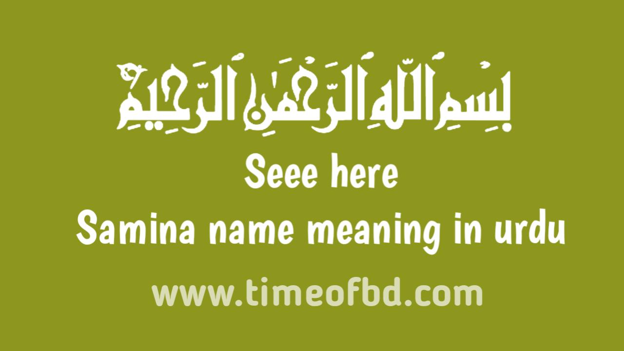 Samina name meaning in urdu, ثمینہ نام کا مطلب اردو میں ہے