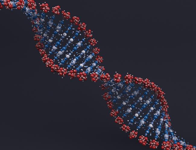 دور التيار الكهربي في فصل جزيئات الحمض النووي