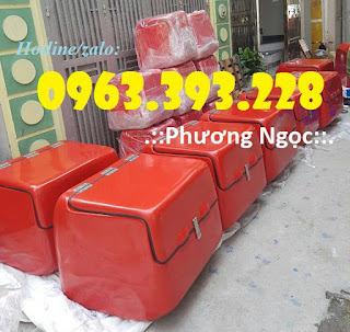 Thùng giao hàng gắn sau xe máy, thùng chở hàng nhựa composite L%25E1%25BB%259Bn%2B2