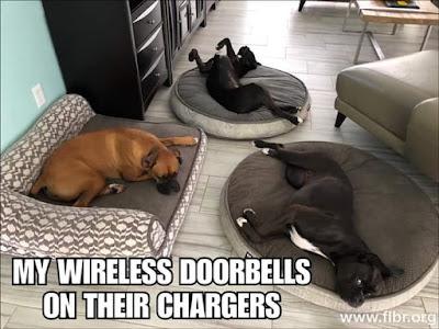 My wireless doorbells