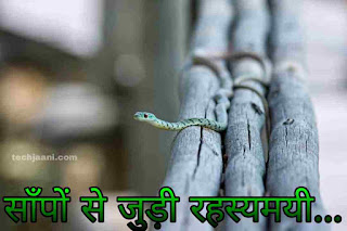 Facts about snake in hindi