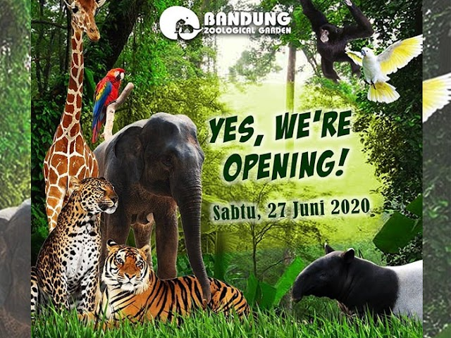 Kebun Binatang Bandung Buka Kembali Sabtu 27 Juni 2020, Ini Harga Tiket dan Protokol Kesehatan