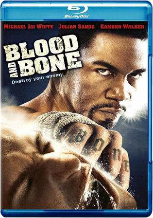 Blood and Bone 2009 BRRip 850MB Hindi Dual Audio 720p Watch Online Full Movie Download bolly4u