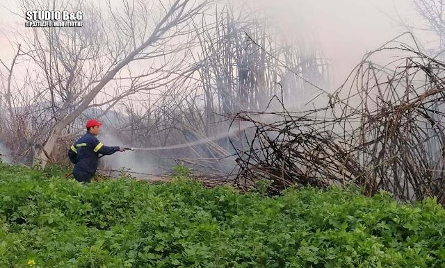Πυρκαγιά στο Λάλουκα Άργους