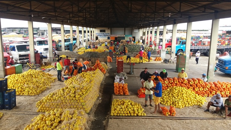 Mercado do Produtor de Juazeiro tem horário de funcionamento alterado devido novo decreto municipal - Portal Spy Noticias Juazeiro Petrolina