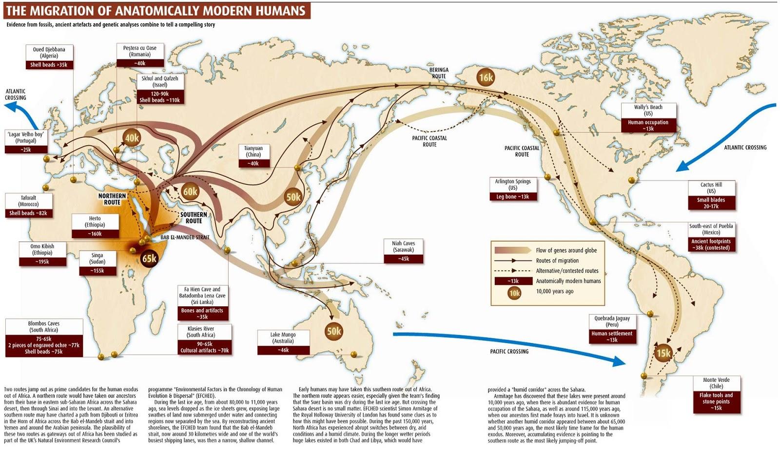 Asal Usul Dan Peta Persebaran Manusia Di Kepulauan Indonesia
