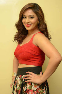 Nikesha Patel in Red Plunging Tank Top and Floral Skirt Jumpers at Araku Road Lo Press Meet