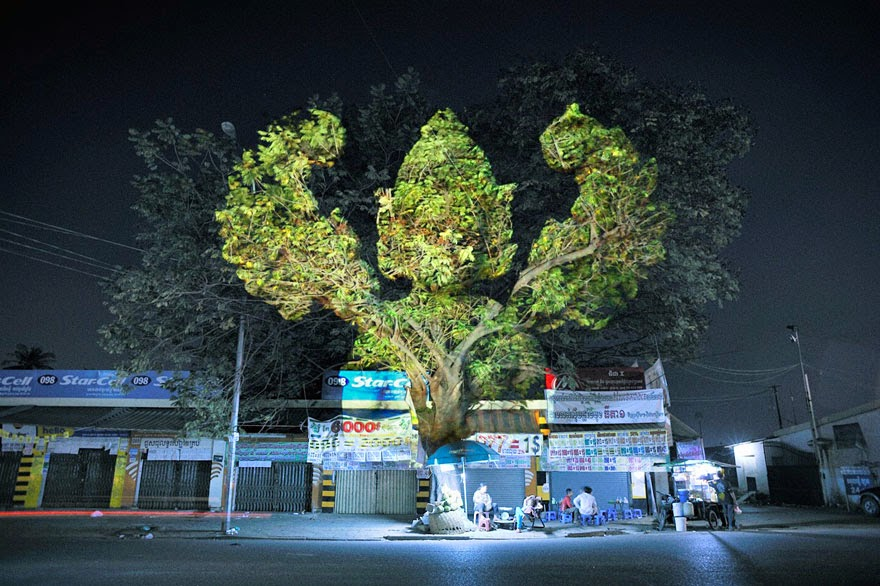 Amazing 3D Projections On Trees