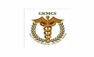 www.gkmcs.edu.pk Jobs 2021 - Medical Teaching Institution (MTI) Gajju Khan Medical College Swabi Jobs 2021 in Pakistan