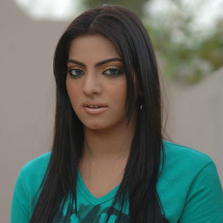 Hadia Sher Ali, Celebrity Ex-Wife