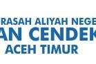 Lowongan Kerja Guru Madrasah Aliyah Negeri Insan Cendakia Aceh Timur