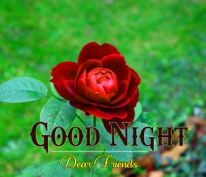 Beautiful Good Night 4k Images For Whatsapp Download 157