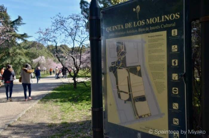 Parque Quinta de los Molinos スペインのマドリードでお花見ができる公園の案内図