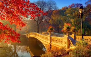 اجمل خلفيات جسور