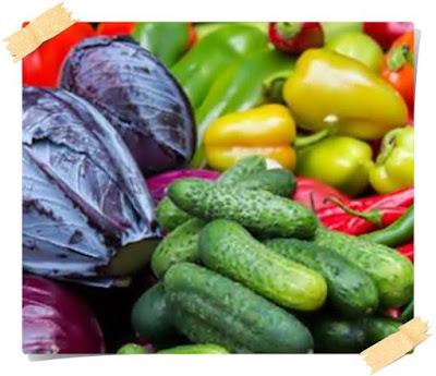 pareri dieta rina cartea scanata pdf contraindicatii tabel pe zile