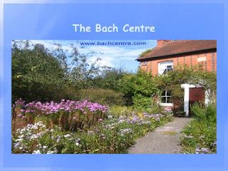 http://www.bachcentre.com/centre/select.htm