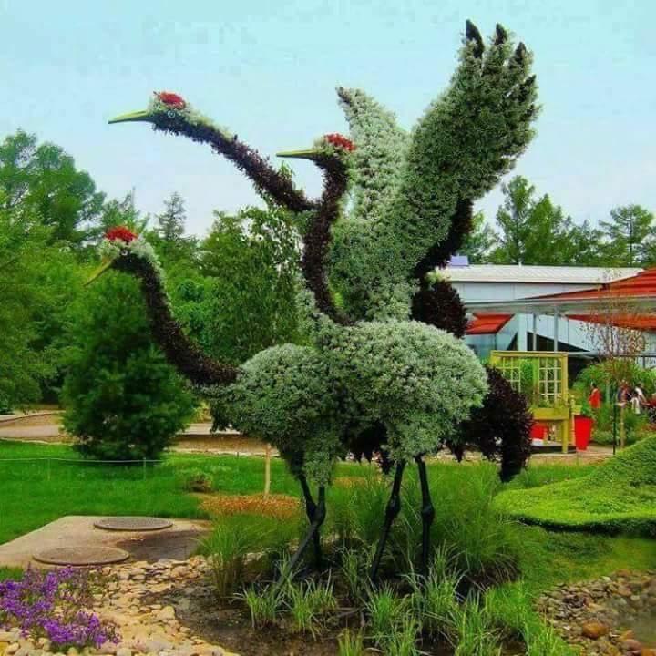 8 gubahan pokok bertemakan haiwan yang menghijaukan pemandangan!