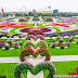 Gallery: World's largest natural flower garden opens in Dubai