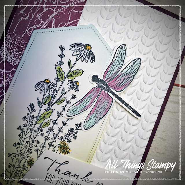 Stampin Up Dandy Garden Dragonfly Wishes