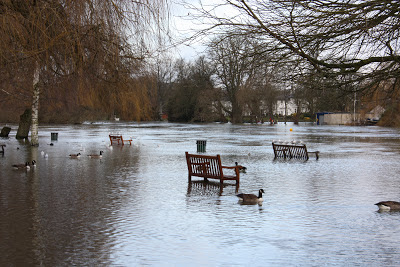 Benches in the river Thames