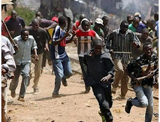 Herdsmen Runs For Their Lives As Thunder Strikes 36 Cows To Death On Sacred Hill in Ondo