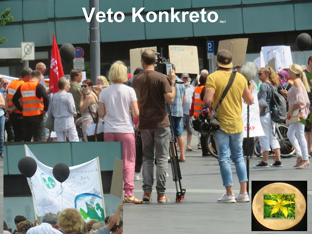 https://fridaysforfuture.de