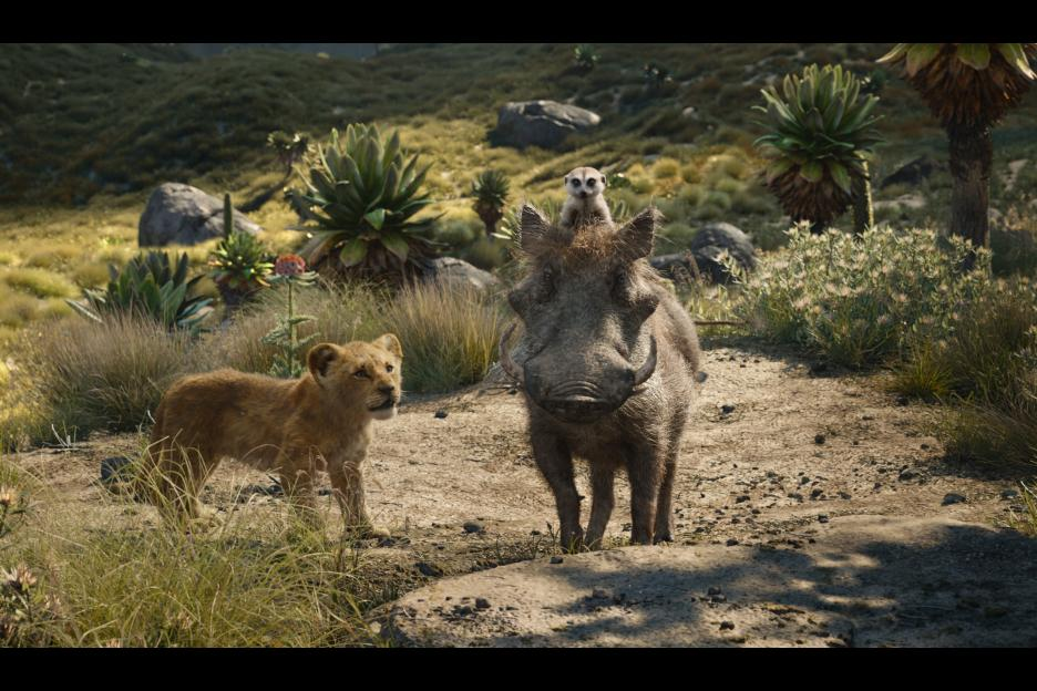Timon and Pumbaa the lion king