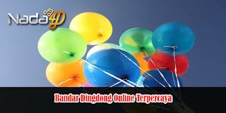 Bandar Dingdong Online Terpercaya