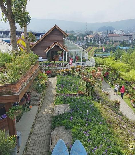 Rainbow Garden Lembang, Destinasi Wisata Surga Pecinta Bunga | Instagramable