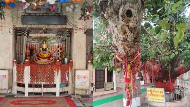 shyam temple chulkana dham samalkha