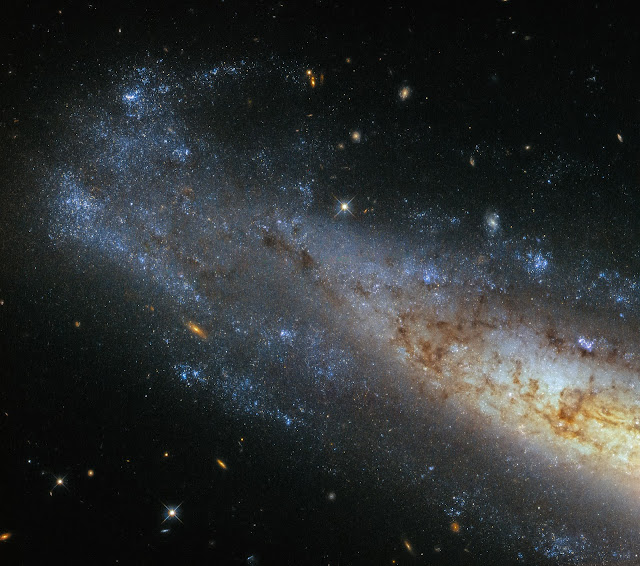 Spiral Galaxy NGC 1448