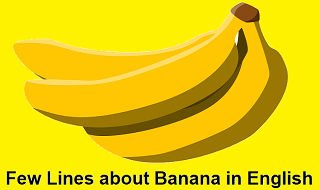 Few Lines about Banana in English for Class 1, 2, 3, 4 and 5
