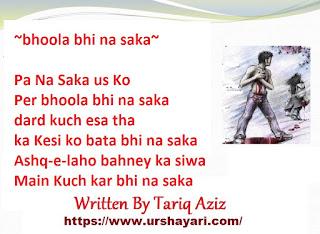 bhoola bhi na saka