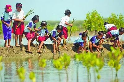 Sumber Daya Alam Upaya Pelestarian Lingkungan Alam