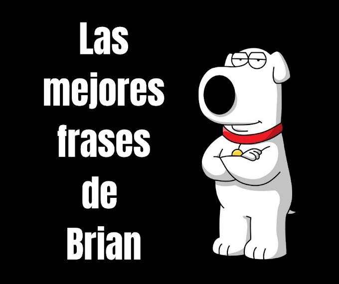 Las mejores Frases Brian Griffin, Padre de Famila