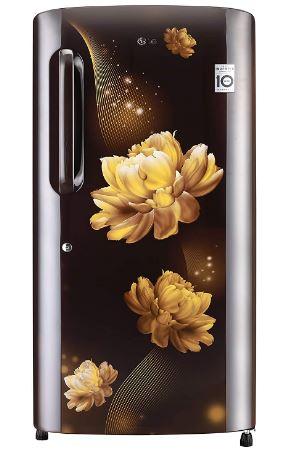 LG 215 L 4 Star Inverter Direct-Cool Single Door Refrigerator (GL-B221AHCY, Hazel Charm)